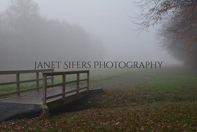 Fog along the path