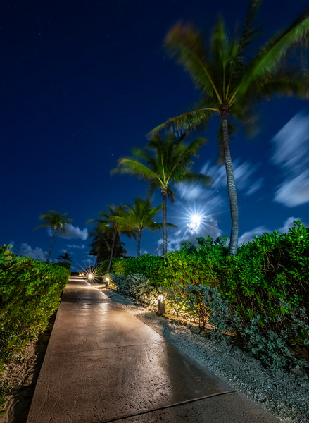 Full Moon Rising Over Pathway 7/18/19