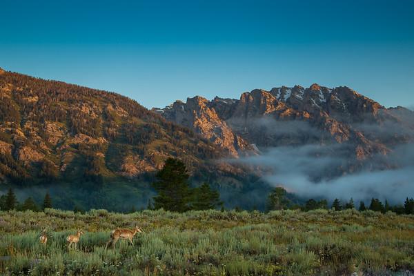 Dawn at Grand Teton
