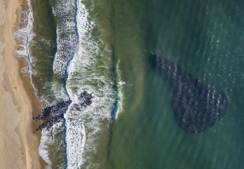 A School of Bunker Fish (or Bait Ball) Just Off Beach In Ocean Grove 9/25/21
