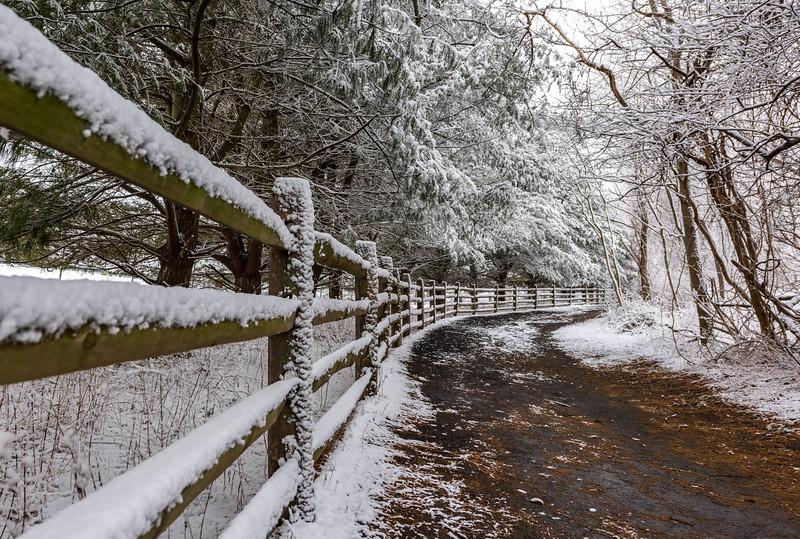 Snowy Pathway at Manasquan Reservoir 1/30/18
