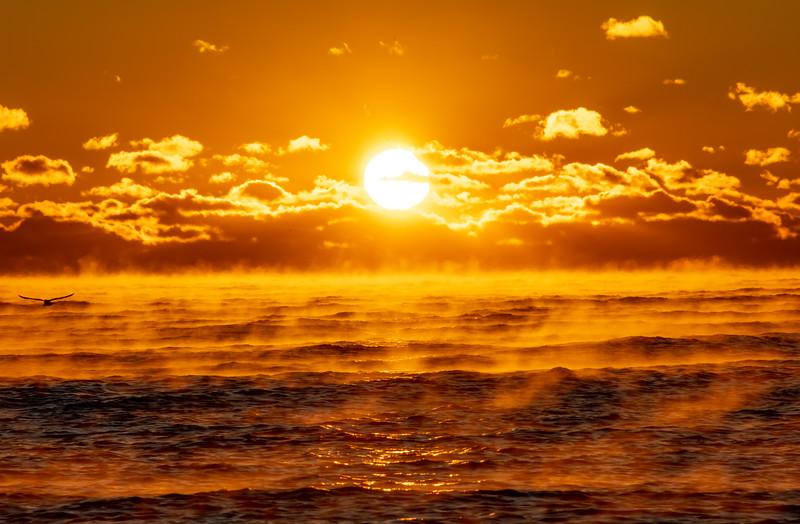 Sea Smoke on Ocean at Sunrise 11/23/18