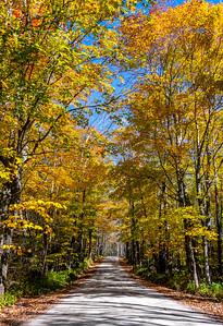 An Autumn Pathway In Vermont 10/10/19