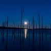 Full Moon Rising Over Manasquan Reservoir 3/12/17