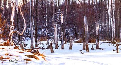 solitude_img_1271_lea creek painting
