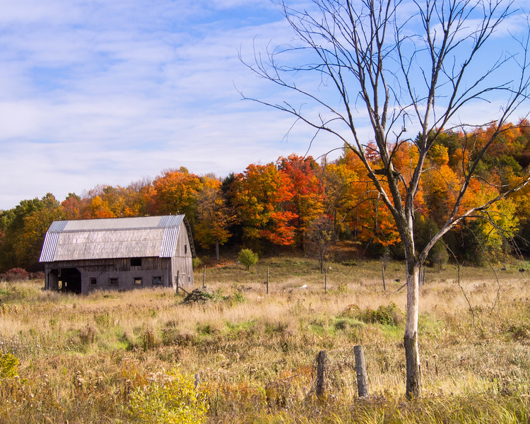 Old barn in fall colours