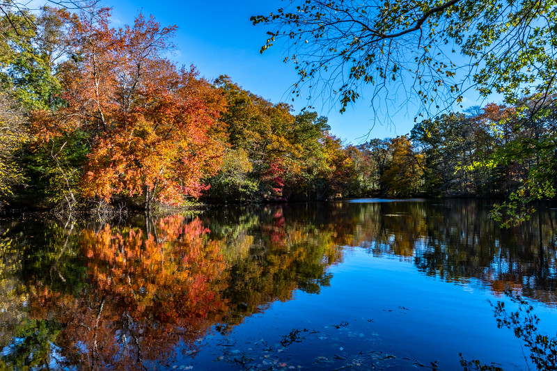 Autumn Reflection in a Lake 10/29/18