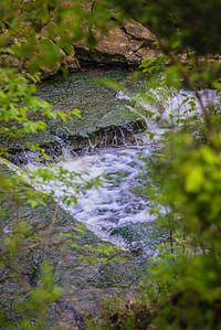 Radnor Lake State Park LR-3388