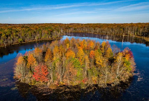 An Island of Autumn Colors 11/4/18