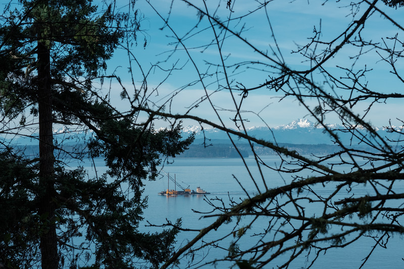 Looking toward the Olympic mountains from Lincoln Park | Seattle, WA | January 2018