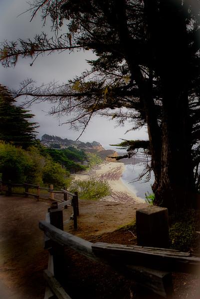 ETC2523 CALIfornia  Coast DSC_9436