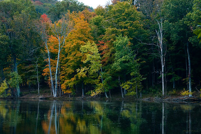 Radnor Lake, TN