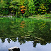 Mirror of fall