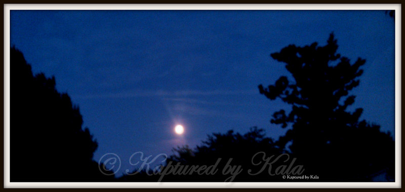 A Texas Blue Moon