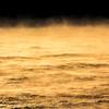 Sea Smoke at Sunrise on Ocean 2/14/16