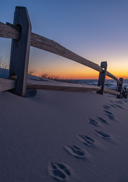 Predawn Colors Over Dune Fencing in Island Beach State Park 2/17/19
