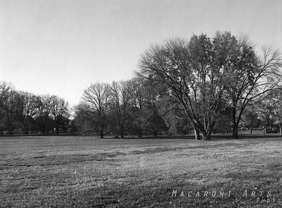 Millrace Park