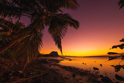 Fishing boat and coconut palm at sunset time. Le Morn mountain in Mauritius.