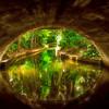 "ETC-3504-WPP1718 ""Venetian Canal Tunnel "" Med  File_0342"