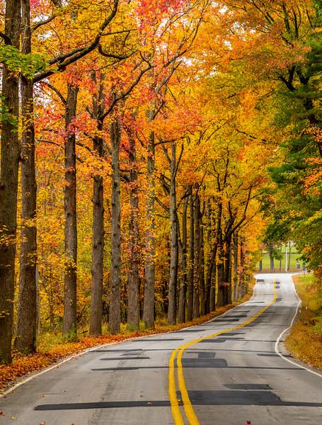 An Autumn Road 10/22/20