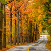 An Autumn Road 10/22/20
