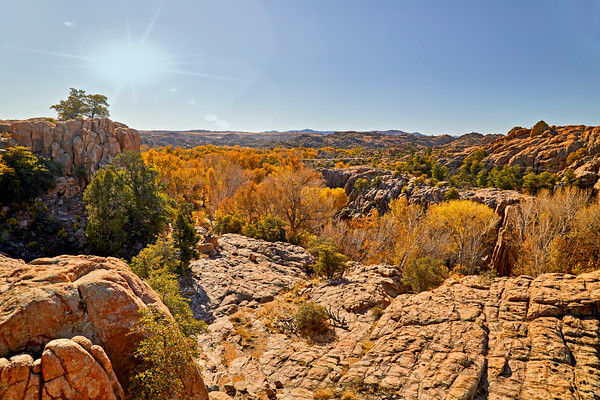 Fall Colored Trees in the boulders