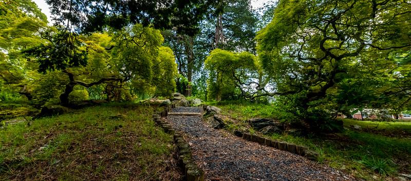 A Japanese Garden 8/9/19