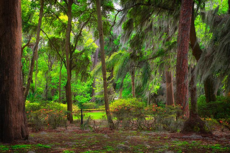 """ETC-3305  """"Azalea Garden Scene"""""""