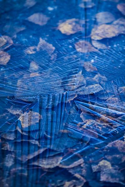 Ice Puddle