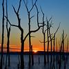 Sunrise Silhouette, Manasquan Reservoir, Howell, NJ