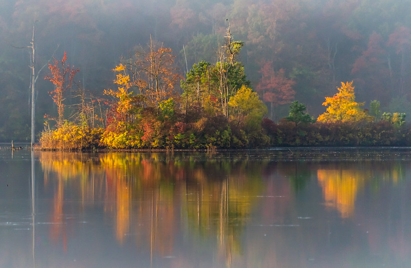 Autumn Colors Reflecting on Foggy Morning at Manasquan Reservoir 10/23/17