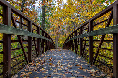 Autumn Colors Over Foot Bridge 11/3/18