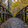 Autumn Colors Over Foot Bridge 11/3/18