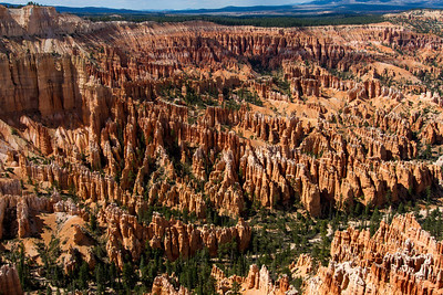 The majestic hoodoos at Bryce Canyon.