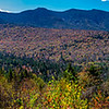 A Panoramic Shot of Autumn Foliage In The White Mountains, NH 10/5/20