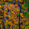 A Hairpin Turn Surrounded By Autumn Colors 10/22/20
