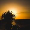 Sonnenuntergang • Câmara de Lobos, Madeira