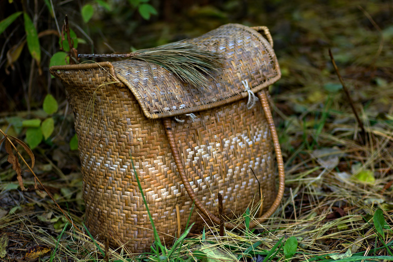 Bag in the Woods