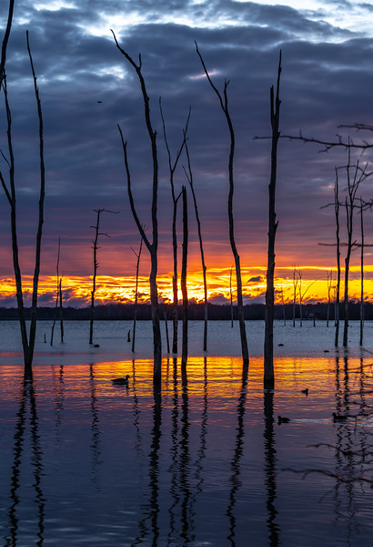 Predawn Colors Over Manasquan Reservoir 11/28/18
