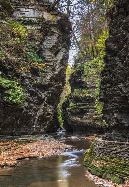 Gorge in Watkins Glen State Park, NY 10/16/17