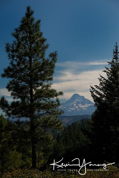 Glimpsing Mt. Hood