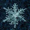 Snowflake 2/9/17