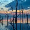Predawn Reflection at Manasquan Reservoir 3/3/19