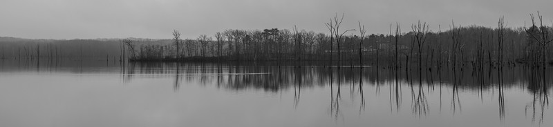 A Panoramic Shot of a Foggy Morning at Manasquan Reservoir 2/18/19