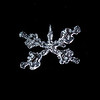 Liquid Snowflake