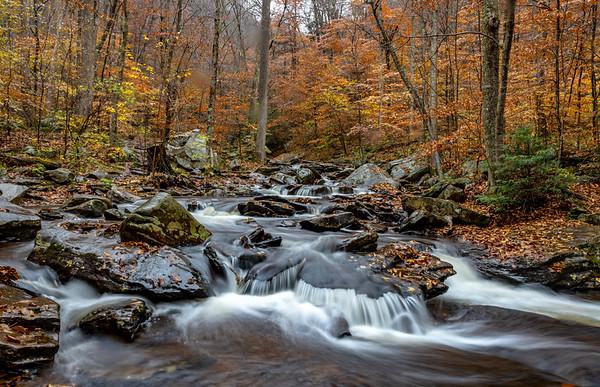 Autumn Waterfall in Rickett's Glen State Park, PA 11/5/18