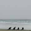 Surfers on an ocean beach - practicing their surf skills with an instructor - Stock Photo by Nature Photographer Christina Craft
