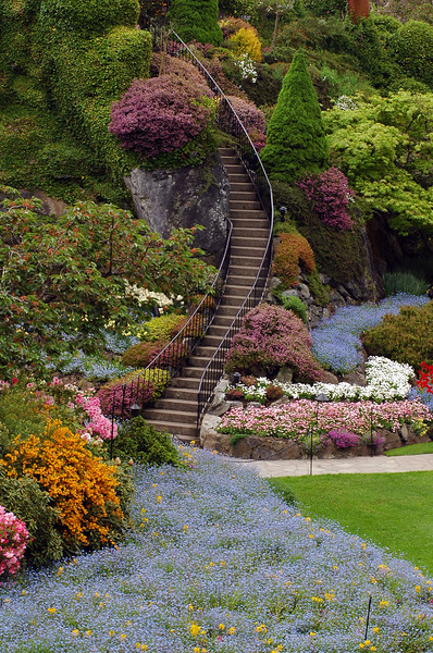 Butchart Gardens in Victoria British Columbia - gardening and horticuture landscaping by Nature photorapher Christina Craft - located in Victoria B.C., nature stock photography