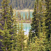 Trees and forests - Rocky Mountain landscape mountains scenic landscape - Photograph by professional nature stock photographer Christina Craft