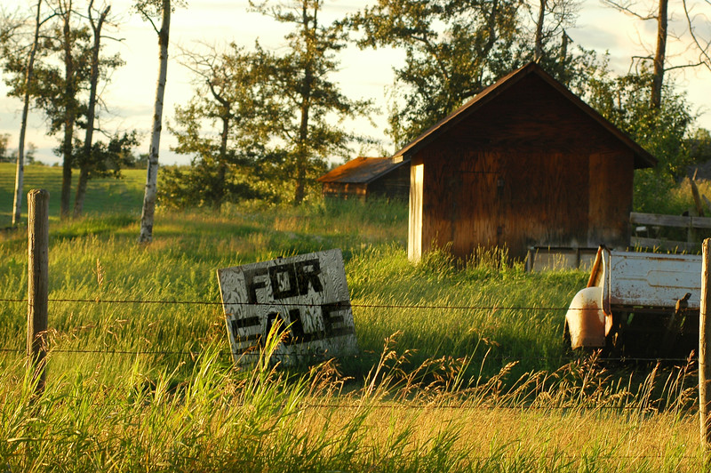 For sale sign on a run down property - Stock Photo by Nature Photographer Christina Craft